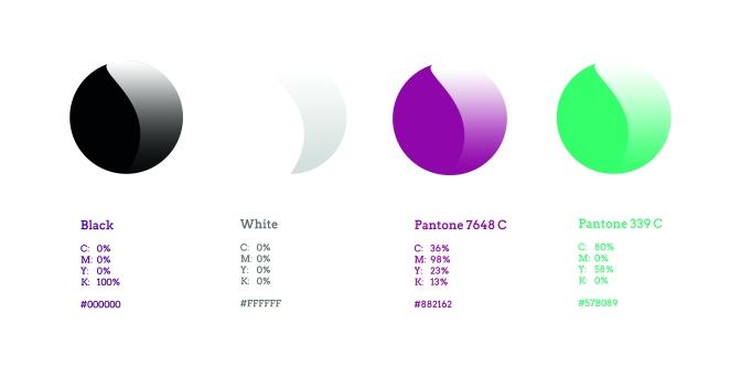 #3 Colour Palette